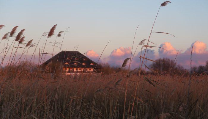Imagine pensiunea Delta Paradis din Murighiol, canalul Dunavat
